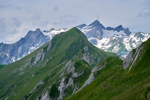 Marwees, against backdrop of Säntis