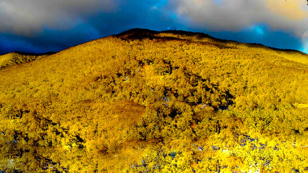 Mountain Of Gold